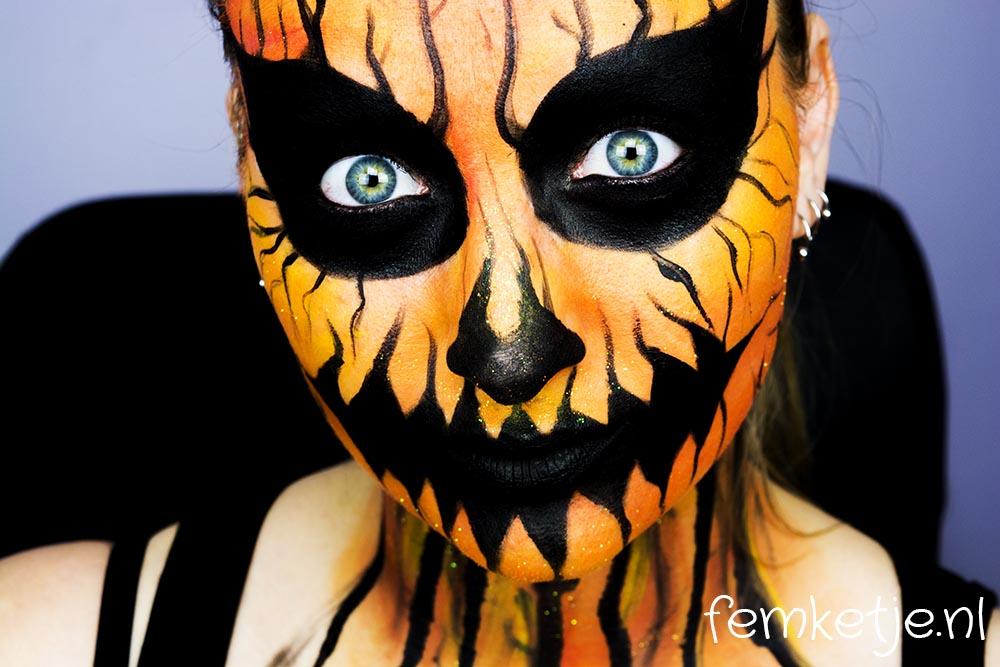 dsc_4527-pumpkin-femketje